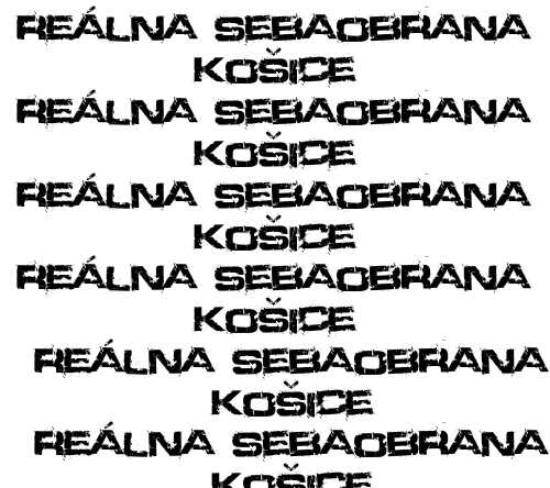 realna_sebaobrana_kosice_logo_fillup